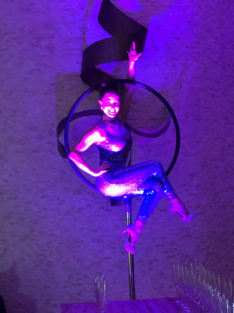 aerial-artist-performer-2